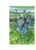 User_1651636ee4c9019f5e4581baab24d802ea88c528b8e7